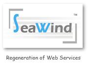 web design - Seawind Solution Pvt Ltd