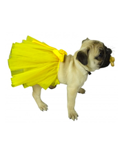 Douge Couture provides beautiful designer dog clothing for your pet.