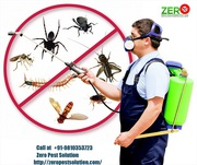Odourless Pest Control in Gurgoan by Experts