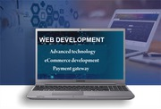Web & IT Expert Rajasthan,  India - WITH U Consultancy & Services